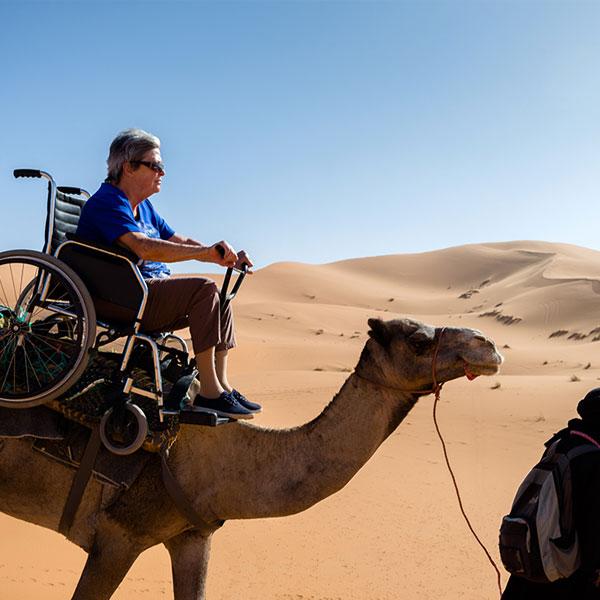 camel wheelchair ride